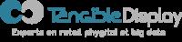 logo_TD